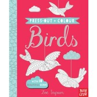 Press Out and Colour: Birds