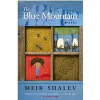 The Blue Mountain by Meir Shalev (Paperback, 2002)