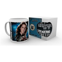 Harry Potter Dynamic Hermione Mug