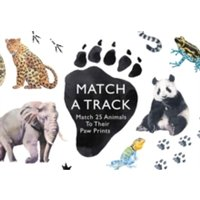 Match a Track : Match 25 Animals to Their Paw Prints