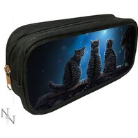 3D Pencil Case Wish Upon a Star