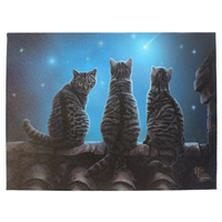 Small Wish Upon A Star Canvas Picture by Lisa Parker