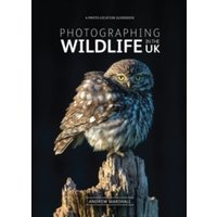 Photographing Wildlife in the UK : Where and How to Take Great Wildlife Photographs