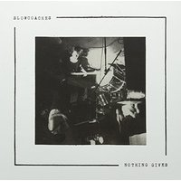Slowcoaches - Nothing Gives Vinyl