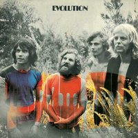 Tamam Shud - Evolution Vinyl