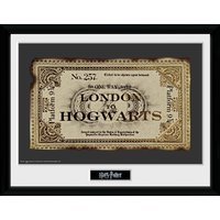 Harry Potter Ticket Framed Collector Print