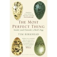 The Most Perfect Thing : Inside (and Outside) a Bird's Egg