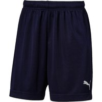 Puma ftblPLAY Training Short Peacoat - Small