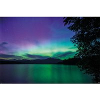 BBC Earth - Northern Lights Maxi Poster
