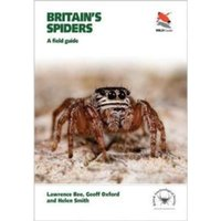 Britain's Spiders : A Field Guide
