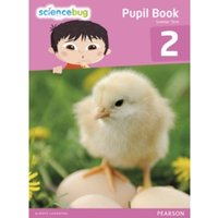 Science Bug Pupil Book Year 2