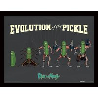 Rick and Morty - Evolution Of The Pickle Framed 30 x 40cm Print