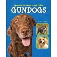 Spaniels, Retrievers and Other Gundogs