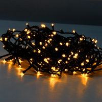 'Led String Fairy Lights   Pukkr 100 Led, 10m, Warm White