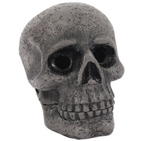 Skull Incense Cone Holder