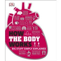 How the Body Works : Big Stuff Simply Explained
