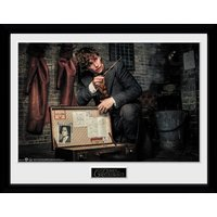 Fantastic Beasts 2 Newt Suitcase Collector Print