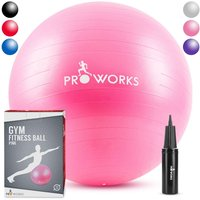 Proworks Gym Fitness Ball (55cm) - Pink