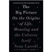 The Big Picture : On the Origins of Life, Meaning, and the Universe Itself