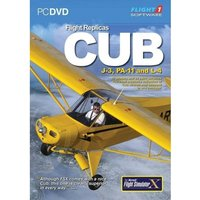 Flight Replicas Cub Game
