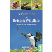 A Summer of British Wildlife : 100 great days out watching wildlife