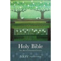 Holy Bible New Standard Revised Version : NRSV Anglicized Edition