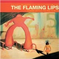 The Flaming Lips Yoshimi Battles The Pink Robots CD