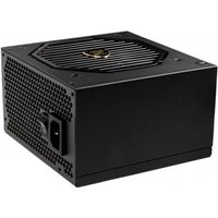 Cougar GX-S 550W 80 Plus Gold Power Supply