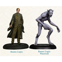 Harry Potter Miniatures Adventure Game Remus Lupin Expansion