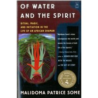 Of Water and the Spirit : Ritual, Magic, and Initiation in the Life of an African Shaman