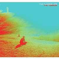 Flaming Lips - The Terror CD