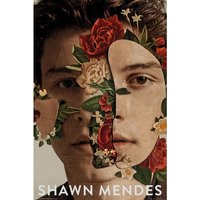 Shawn Mendes Flowers Maxi Poster