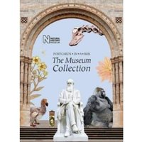The Museum Collection : Postcards in a Box