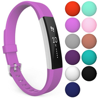 Fitbit Alta / Alta HR Strap Single Large - Violet