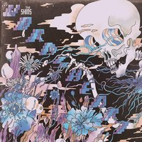The Shins - The Worms Heart CD