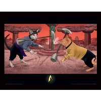 Star Trek Cats - Cat Fight Framed 30 x 40cm Print