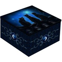Wish Upon a Star Cats Mirror Box