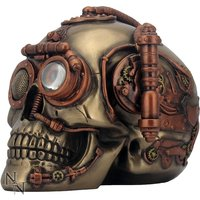 Steam Powered Observation Steampunk Skull