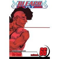 Bleach, Vol. 66 : 66