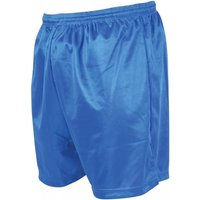 Precision Micro-stripe Football Shorts 18-20 inch Royal Blue