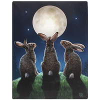 Small Moon Shadows Canvas Picutre by Lisa Parker
