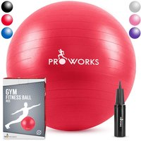 Proworks Gym Fitness Ball (55cm) - Red