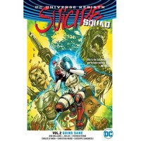Suicide Squad Rebirth: Volume 2: Going Sane