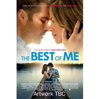 The Best Of Me DVD