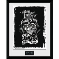 Harry Potter Love Collector Print