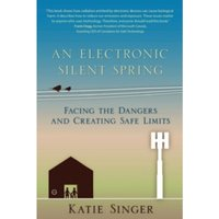 An Electronic Silent Spring : Facing the Dangers and Creating Safe Limits