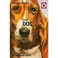 How it Works: The Dog