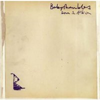 Babyshambles - Down In Albion CD