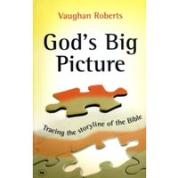 God's Big Picture : Tracing the Storyline of the Bible