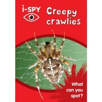 i-Spy Creepy Crawlies : What Can You Spot?